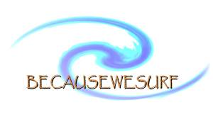 Becausewesurf Hawaii