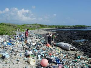 ocean_girl_project_Kamilo_Beach_litter