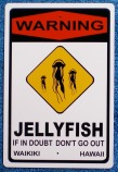 sign-oceangirlproject-new-surfers-Jellyfish